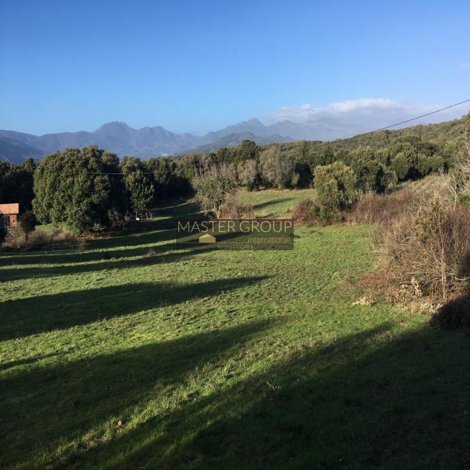 Offres de vente Terrain Petreto-Bicchisano (20140)